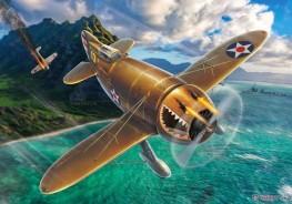"Granville P-45B ""Bee Killer"""